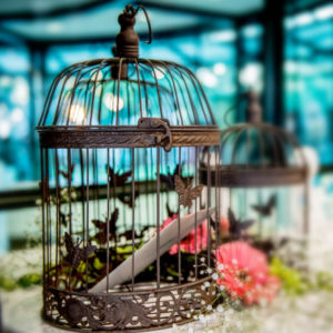 Large Rustic Butterfly Bird Cage