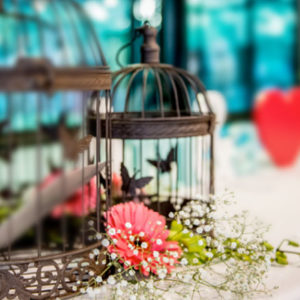 Small Rustic Butterfly Cage